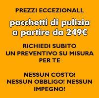 Pulizia da 249€